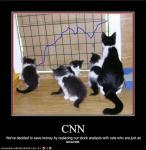 funny-pictures-your-cats-are-stock-analysts
